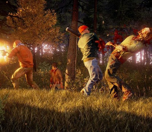 State of Decay 2 Crashing Fix PC